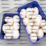 خرید ظروف بسته بندی قارچ
